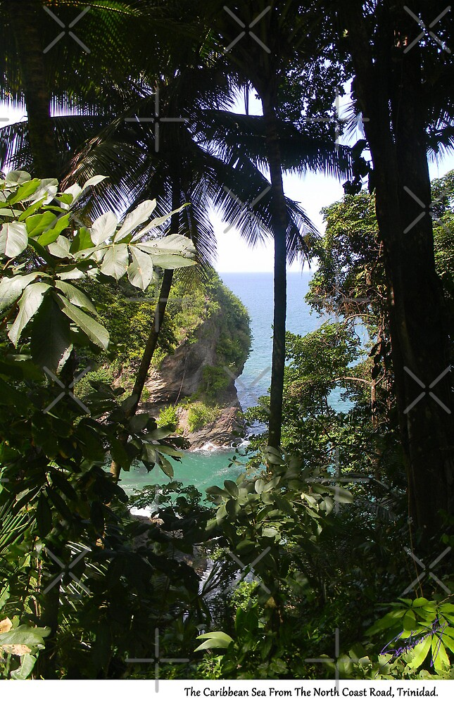 From The North Coast Road, Trinidad. by santimanitay