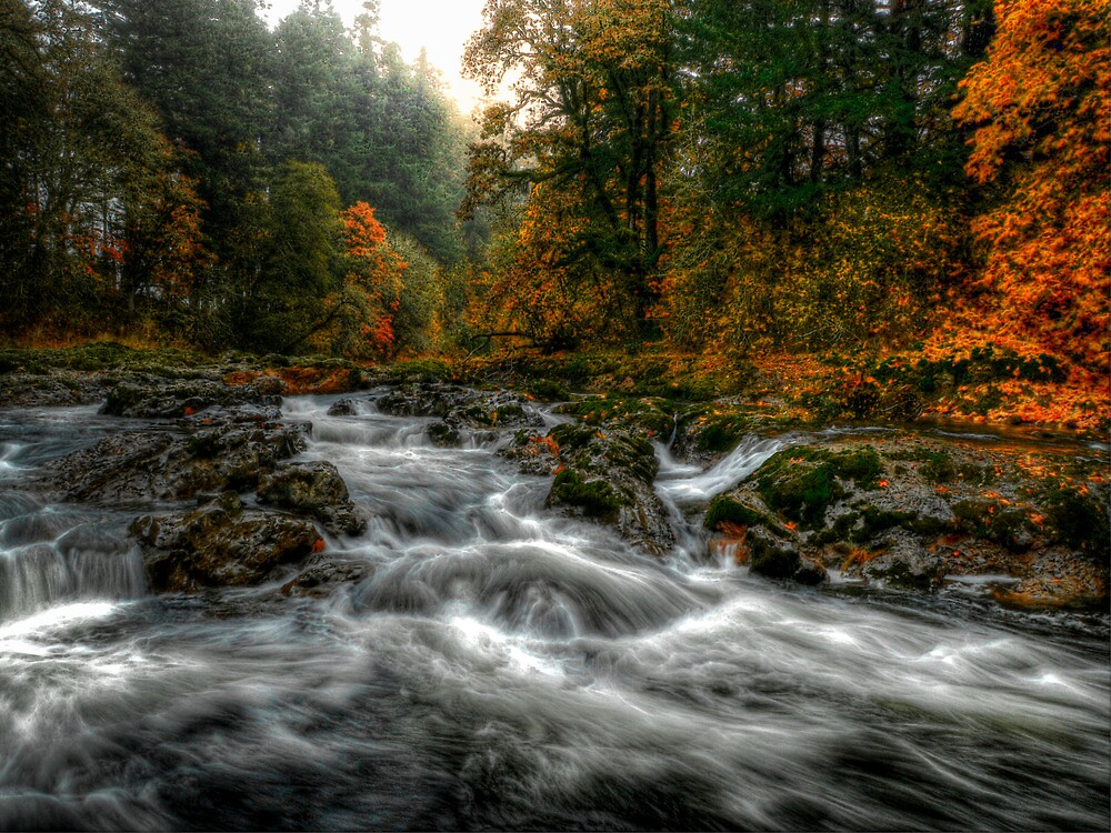 On The Move by Charles & Patricia   Harkins ~ Picture Oregon