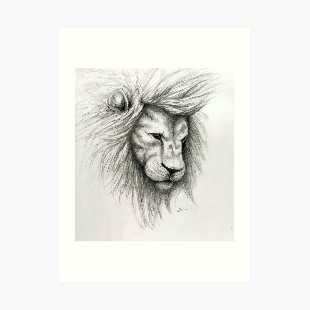 Lion pencil sketch art print