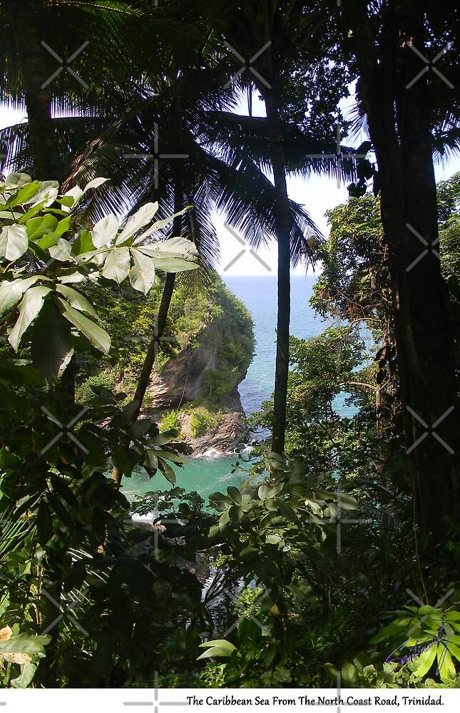 The Caribbean Sea From The North Coast Road, Trinidad. by santimanitay
