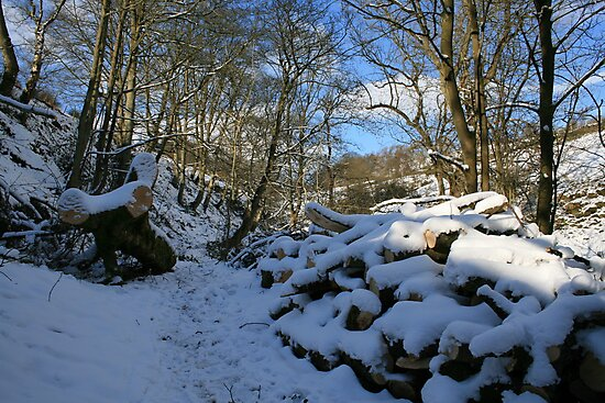 Snow bridge 3 by laurenrebecca8