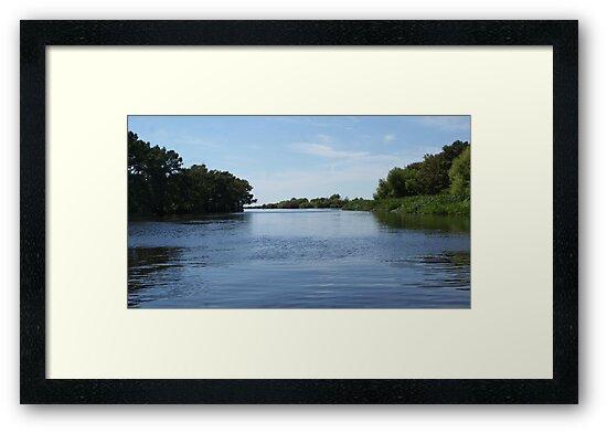 Beautiful Blue's On Turtle Bayou by Theresa Tunstall