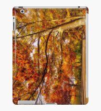 Fall Road,Chestnut Hill, Massachusetts iPad Case/Skin