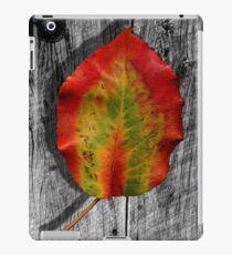 Leaf on Barnwood iPad Case/Skin