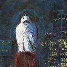 Melbourne Owl by Michele Meister