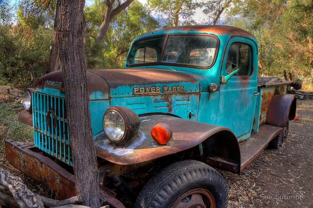 Dodge Power Wagon by Sue  Cullumber