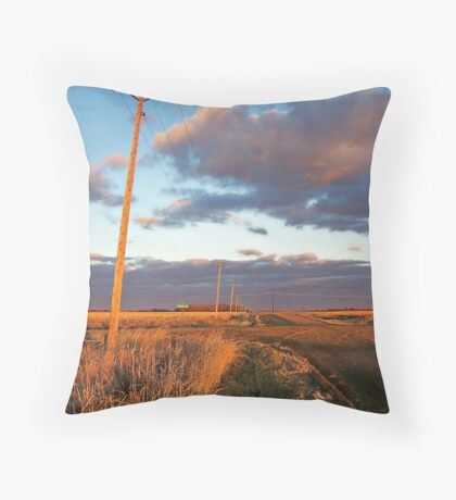 Lonesome Roads Throw Pillow