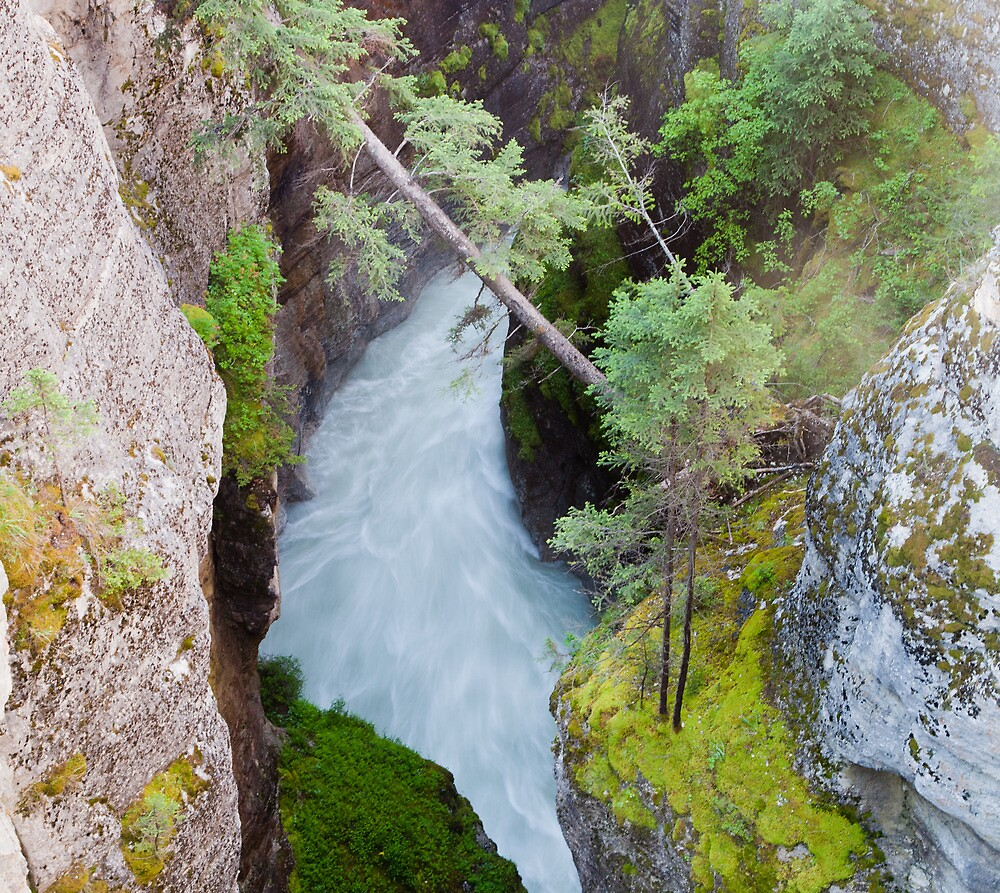 Maligne Canyon, AB by Andy Townsend