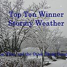 Top Ten - Stormy Weather by quiltmaker
