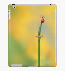 California Girls (iPad) iPad Case/Skin