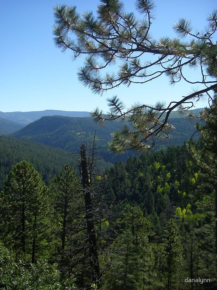 The High Road, Santa Fe to Taos by danalynn