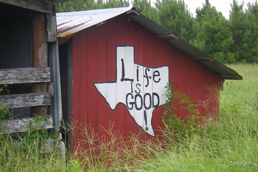 Texas Attitude by danalynn