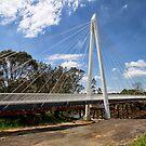 Pearson Street Bridge by Judith Cahill