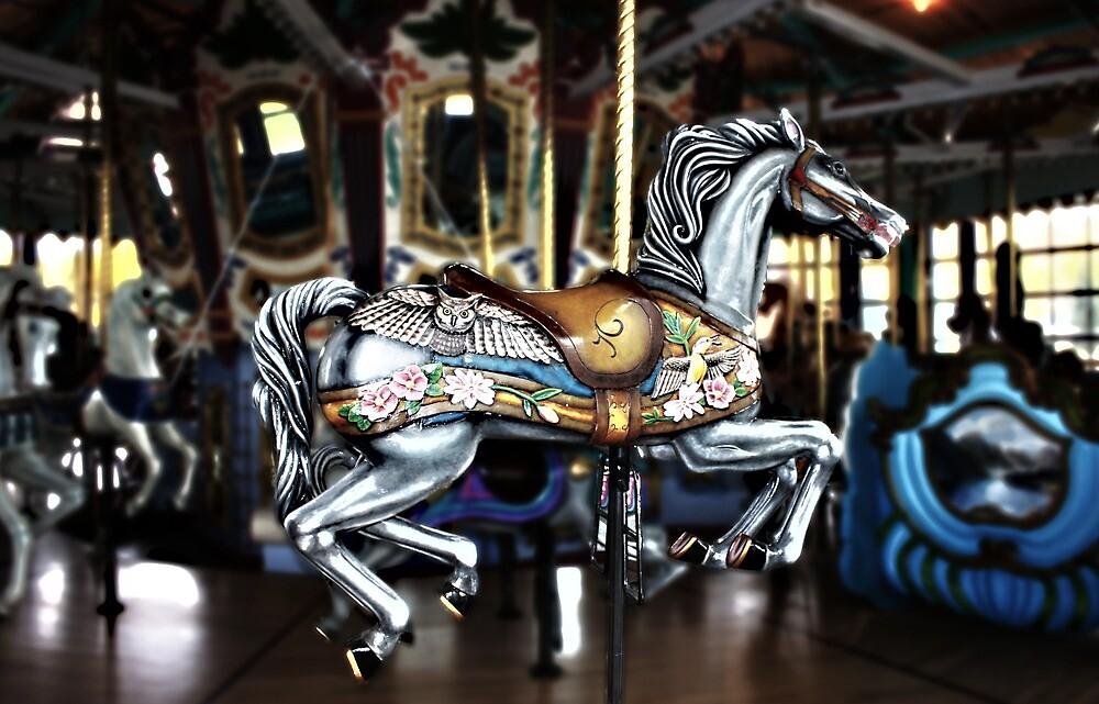 Circus Ride  by JerryCordeiro