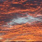 Sky Fire by Astrid Ewing Photography