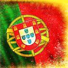 portugal flag by naphotos
