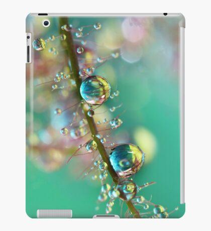 Smokey Rainbow Drops iPad Case/Skin