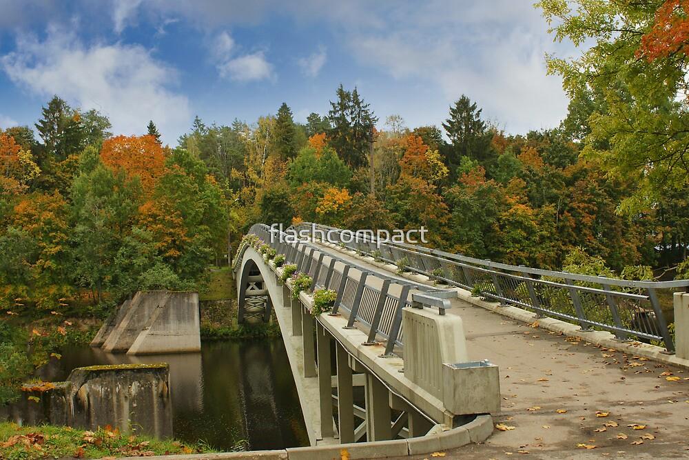Bridge in Autumn by flashcompact