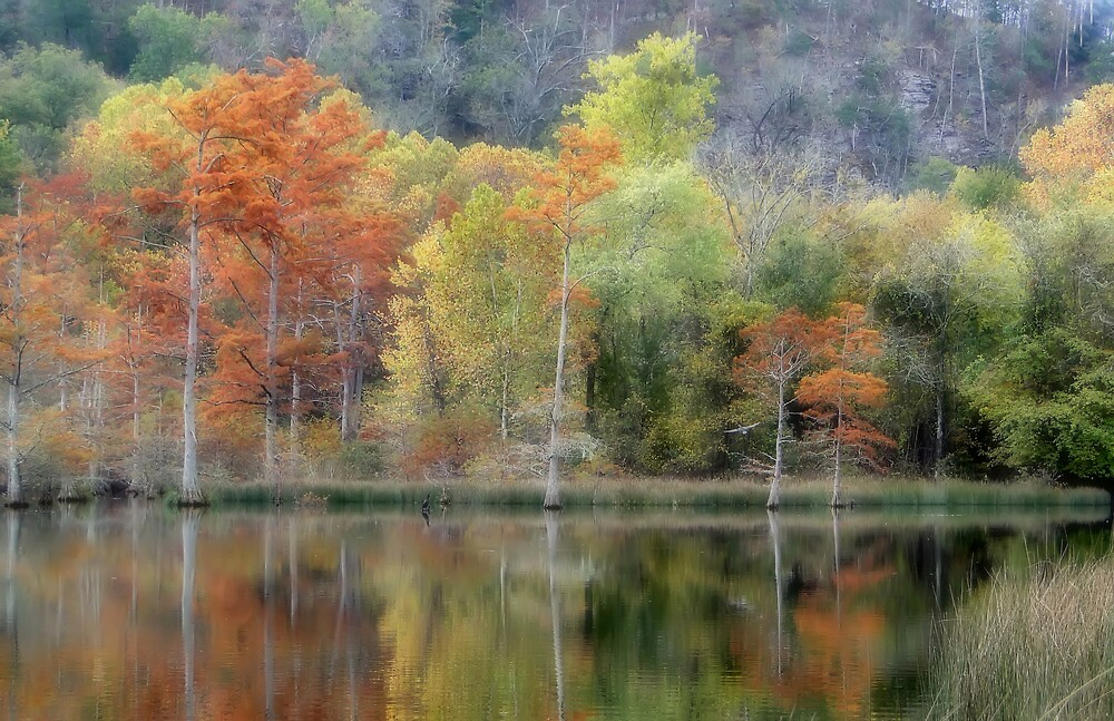 The Colors Of An Autumn Fantasy by Carolyn  Fletcher