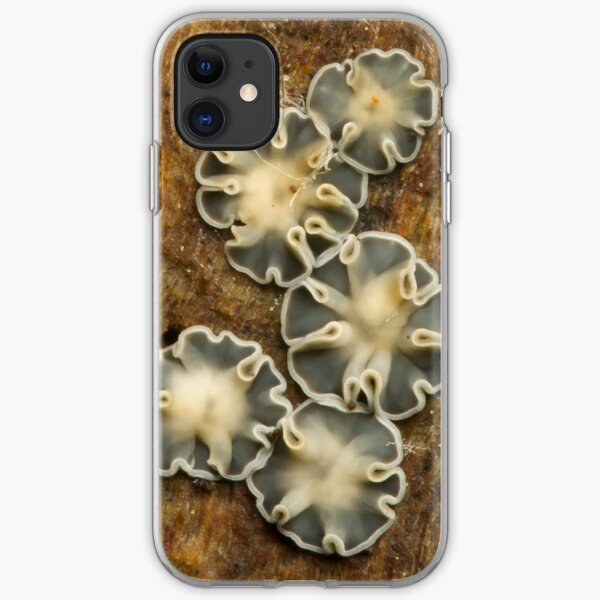 Slime Mold iPhone Soft Case