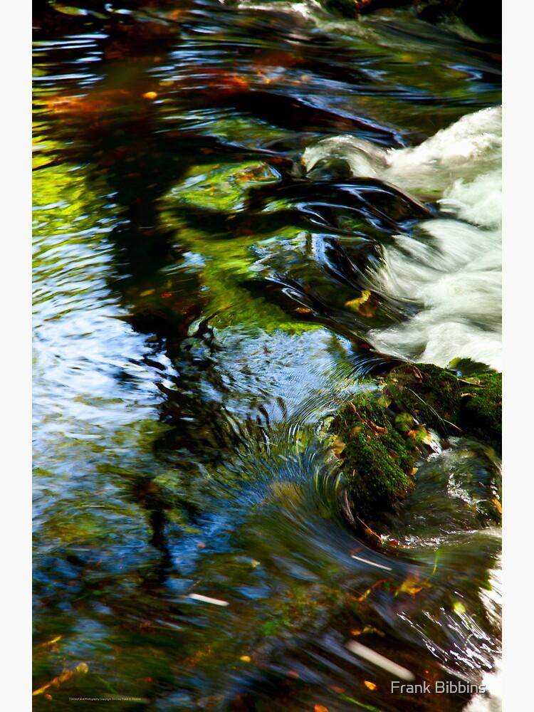 The River Aven  2012 by organicman2