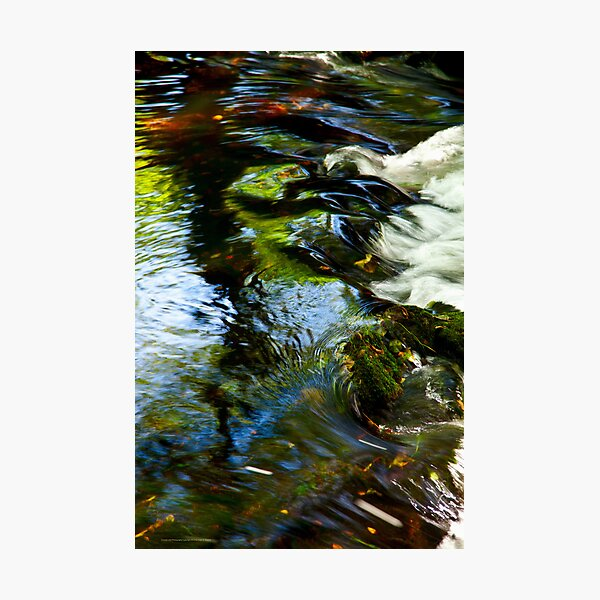 The River Aven  2012 Photographic Print