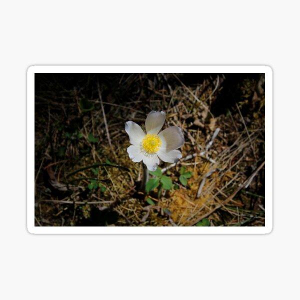Vignette Floral Sticker