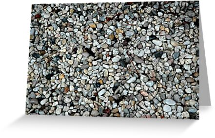 Pebbles by Frederick James Norman