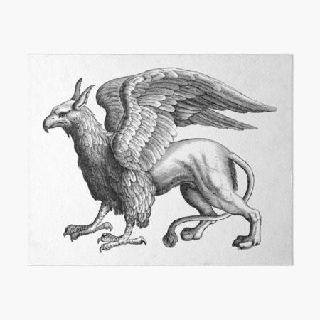 Griffin - Black and white Art Board Print
