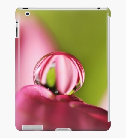 Candy Stripe with Green iPad Case/Skin