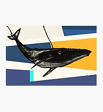 Message from the Whale Photographic Print