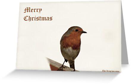 Christmas Robin - Landscape by Lennox George