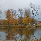 Reflections of Fall by Mellinda