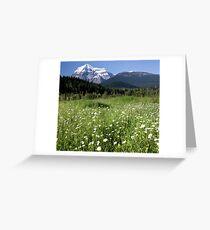 Meadow, Mt Robson, BC Greeting Card