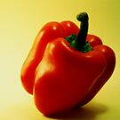 Only One Red Pepper by Somerset33