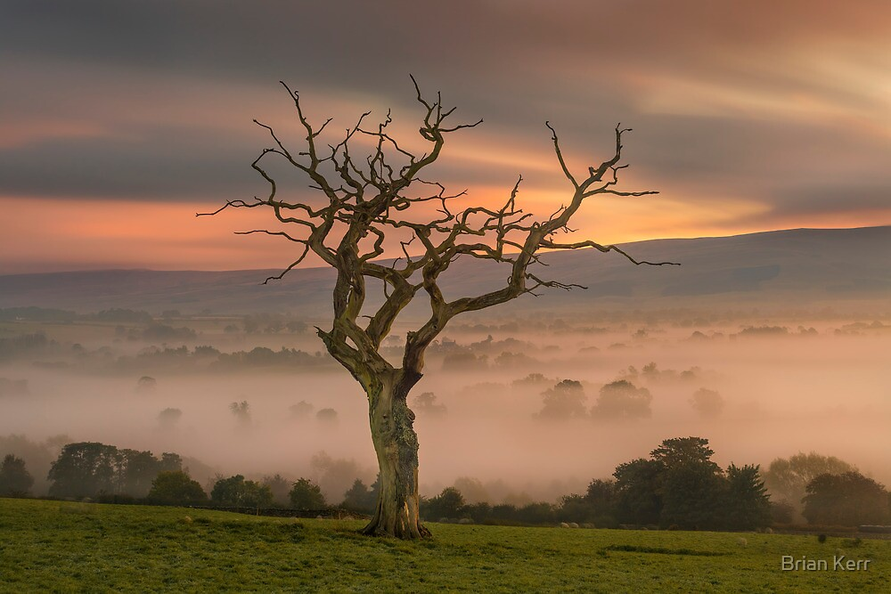 193 Seconds, The Eden Valley by Brian Kerr
