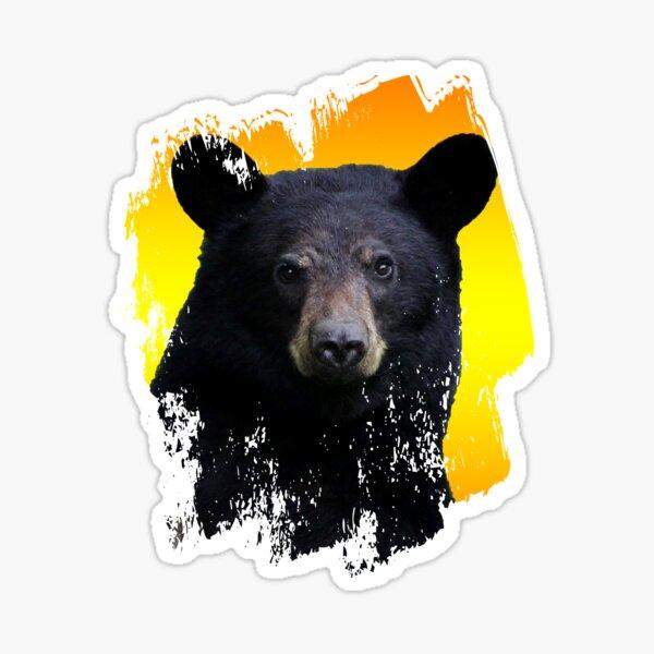 Wild Bear Animal Face Art Sticker