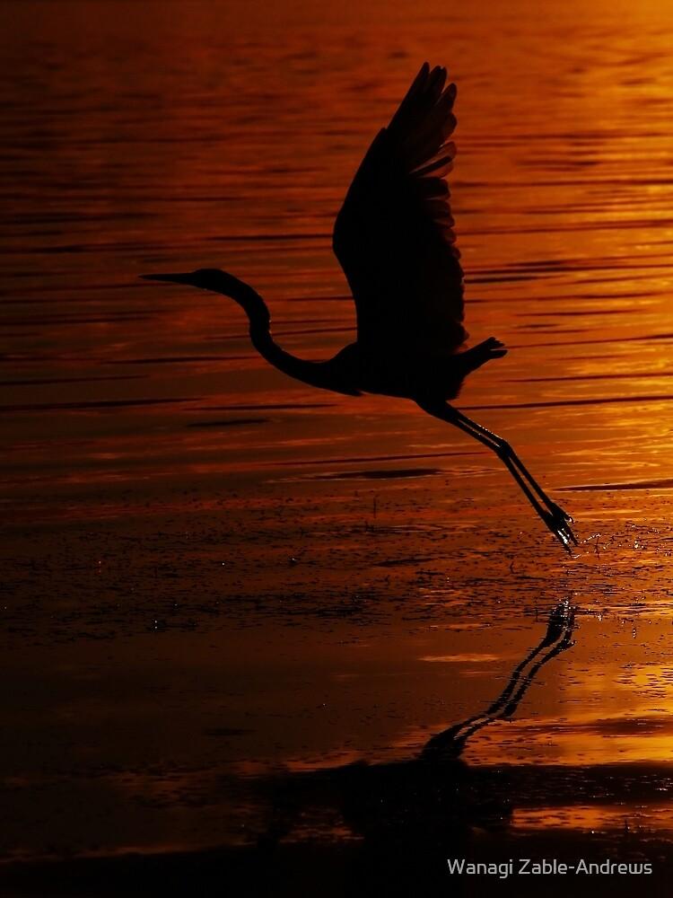Heron in flight by Wanagi Zable-Andrews