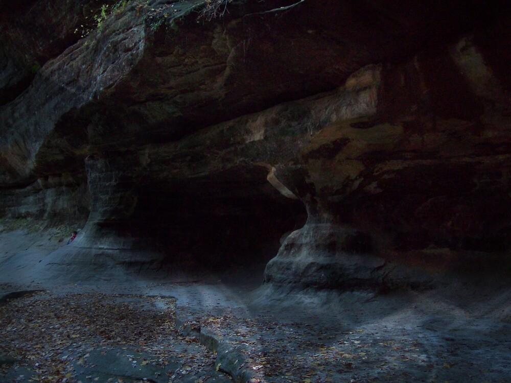 Canyon by SueMydliak