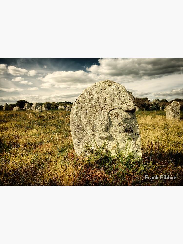 Spirit in Stone, Carnac 2012 by organicman2