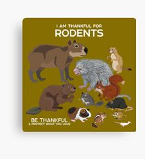 I Am Thankful For Rodents Canvas Print
