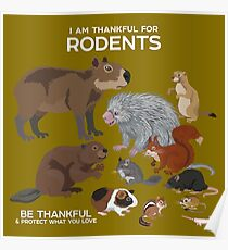 I Am Thankful For Rodents Poster