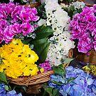 Flower Market - Silk Flowers by David Galson