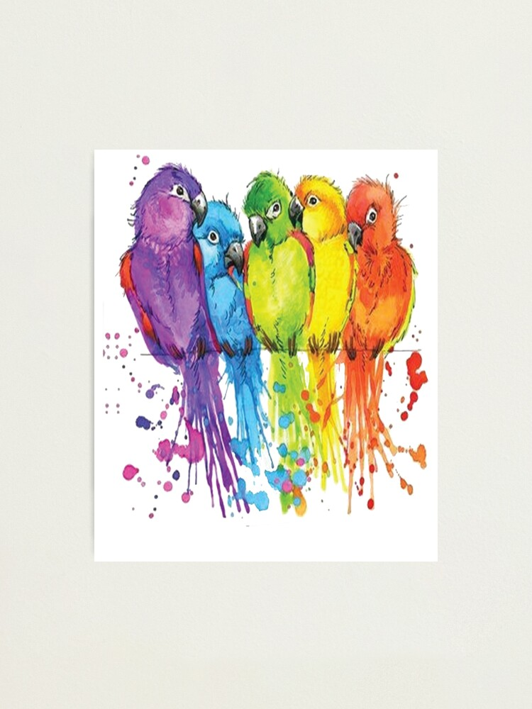 Parrot Bird Rainbow Colorful Animal Art Photographic Print By Horseunicorns Redbubble