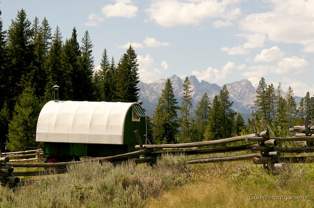 Fancy Camp by Gwen montgomery