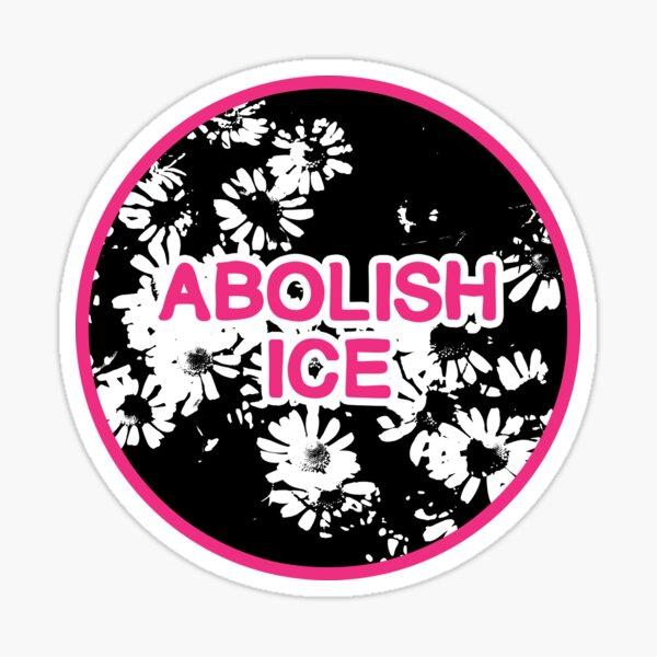 abolish ice | disarm defund dismantle Sticker