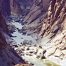Augrabies Canyon & Orange River, South Africa by Bev Pascoe
