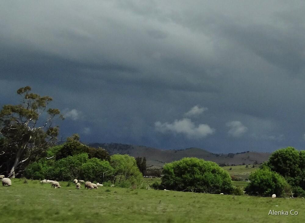 here comes the rain again by Alenka Co