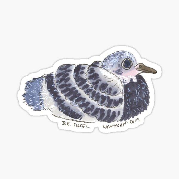 Baby Pigeon Sticker