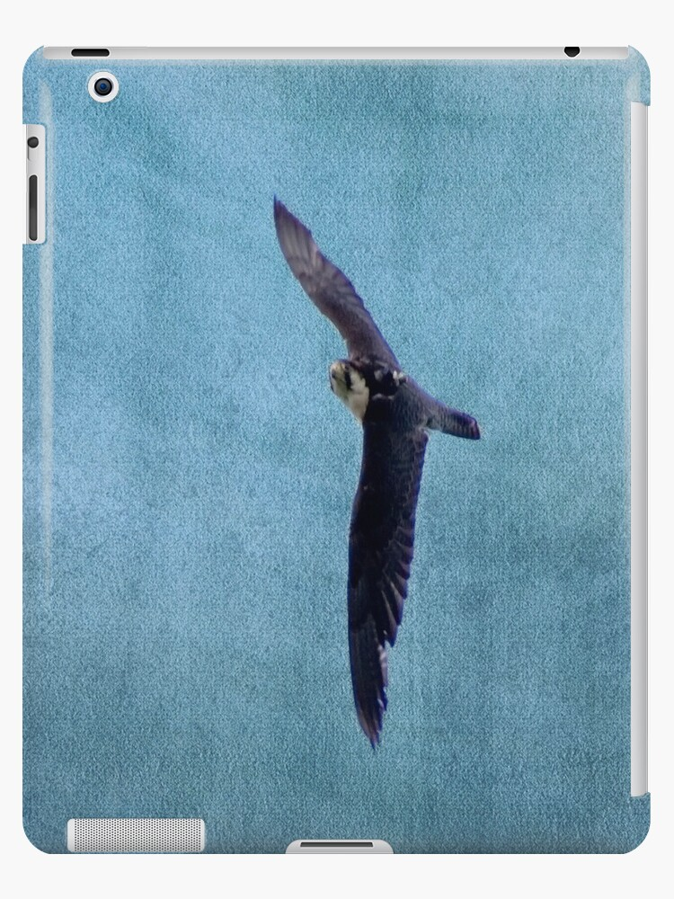 Falcon iPad case by Country  Pursuits